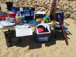 Beach Party 2014 (22)