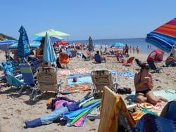 Beach Party 2014 (29)