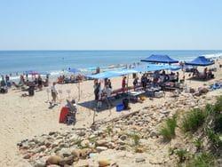 Beach Party 2014 (4)
