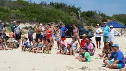 Beach Party 2016 (34)